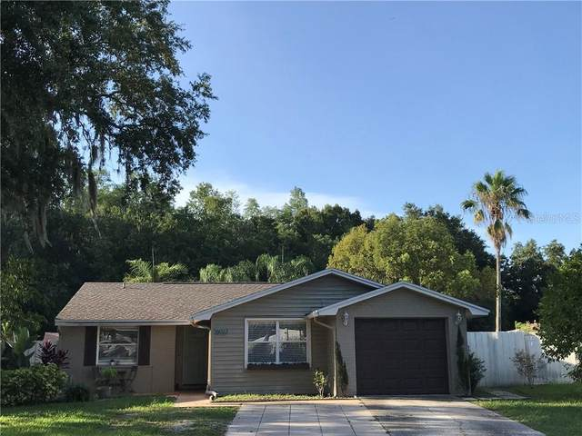 16023 Saddlestring Drive, Tampa, FL 33618 (MLS #T3250260) :: Team Bohannon Keller Williams, Tampa Properties