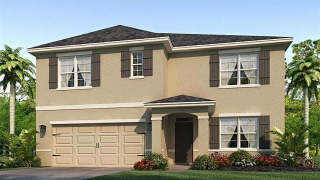 3912 Willow Branch Place, Palmetto, FL 34221 (MLS #T3250266) :: Bustamante Real Estate