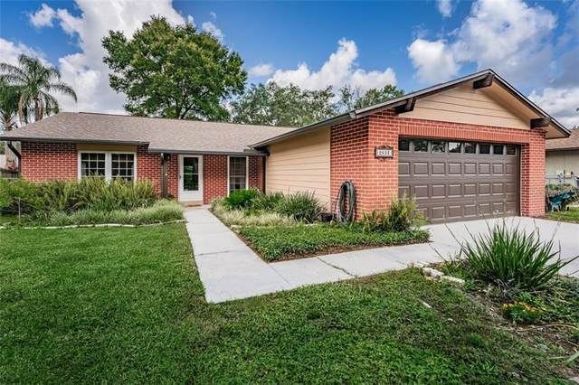 2603 Giant Place, Seffner, FL 33584 (MLS #T3250302) :: EXIT King Realty