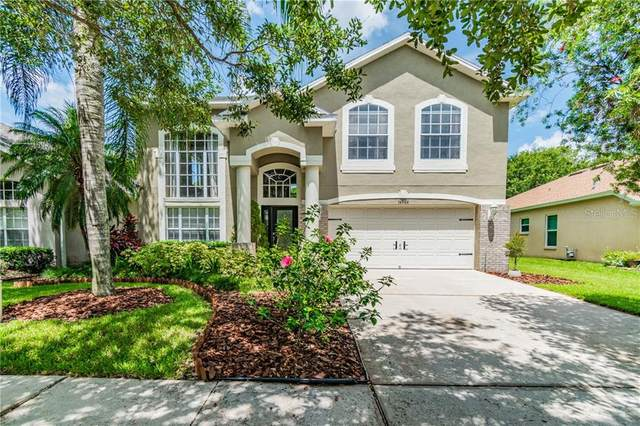 16906 Hawkridge Road, Lithia, FL 33547 (MLS #T3250343) :: Mark and Joni Coulter | Better Homes and Gardens
