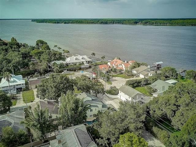 3134 S Canal Drive, Palm Harbor, FL 34684 (MLS #T3250371) :: MavRealty