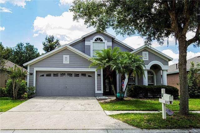 10143 Heather Sound Drive, Tampa, FL 33647 (MLS #T3250462) :: Lockhart & Walseth Team, Realtors