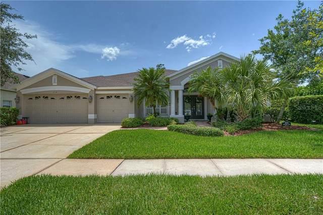 16141 Bridgepark Drive, Lithia, FL 33547 (MLS #T3250463) :: The Brenda Wade Team