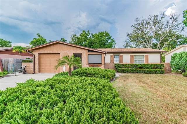 2206 Whitney Place, Valrico, FL 33594 (MLS #T3250524) :: Team Bohannon Keller Williams, Tampa Properties