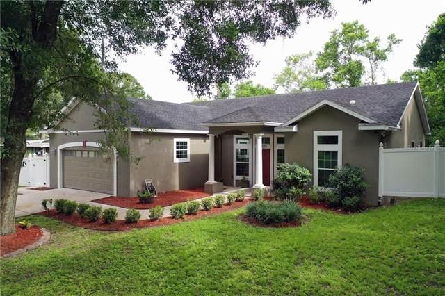 22035 Carson Drive, Land O Lakes, FL 34639 (MLS #T3250571) :: Cartwright Realty