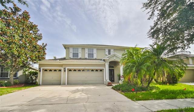 10757 Banfield Drive, Riverview, FL 33579 (MLS #T3250594) :: Griffin Group