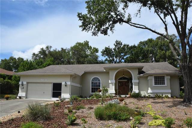 2 Balsam Court W, Homosassa, FL 34446 (MLS #T3250647) :: Griffin Group