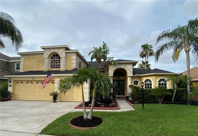 222 Rosana Drive, Brandon, FL 33511 (MLS #T3250666) :: Team Bohannon Keller Williams, Tampa Properties