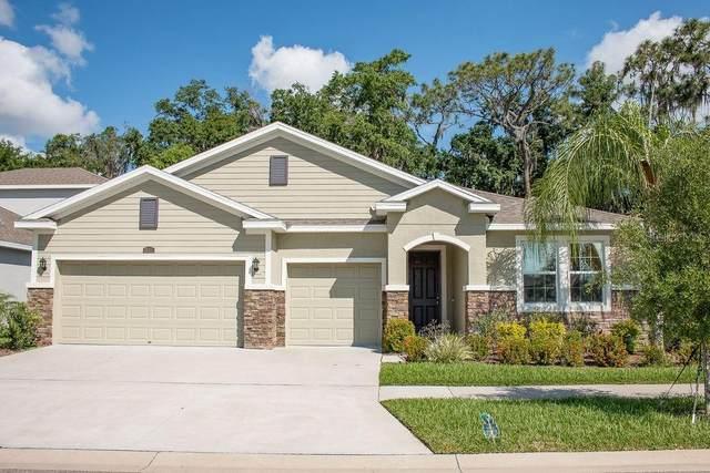 10311 Riverdale Rise Drive, Riverview, FL 33578 (MLS #T3250670) :: Dalton Wade Real Estate Group