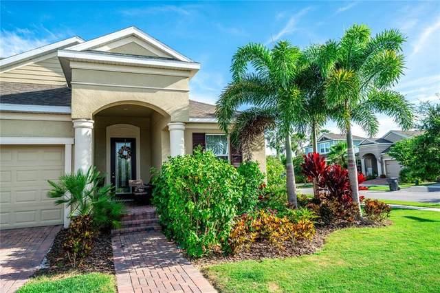 5230 Admiral Pointe Drive, Apollo Beach, FL 33572 (MLS #T3250722) :: Frankenstein Home Team