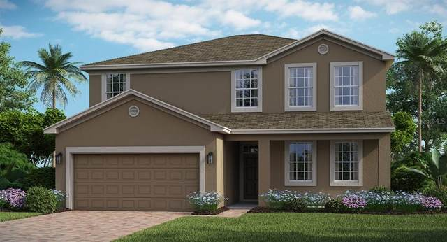 1949 Mountain Pine Street, Ocoee, FL 34761 (MLS #T3250754) :: Griffin Group