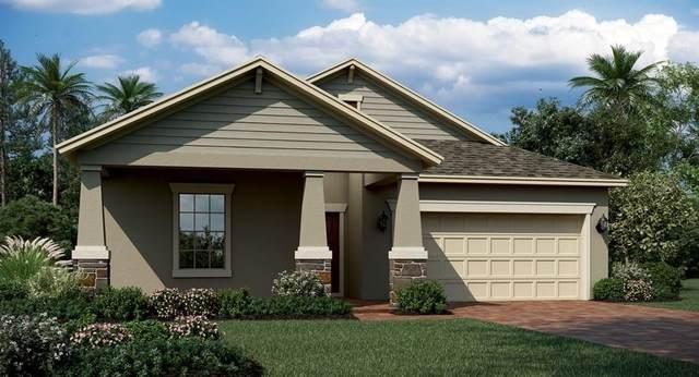 1997 Mountain Pine Street, Ocoee, FL 34761 (MLS #T3250804) :: Griffin Group