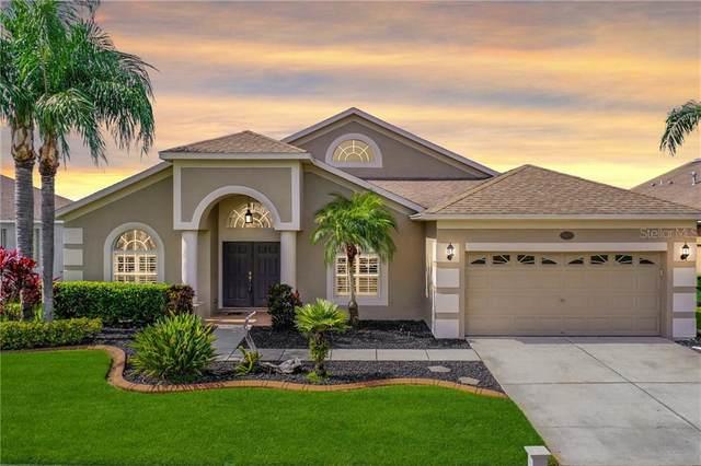 16701 Nikki Lane, Odessa, FL 33556 (MLS #T3250825) :: Pepine Realty