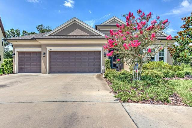 13811 Moonstone Canyon Drive, Riverview, FL 33579 (MLS #T3250831) :: Team Borham at Keller Williams Realty