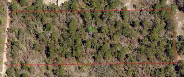 5149 N Smokey Mountain Point, Crystal River, FL 34428 (MLS #T3250837) :: Heckler Realty
