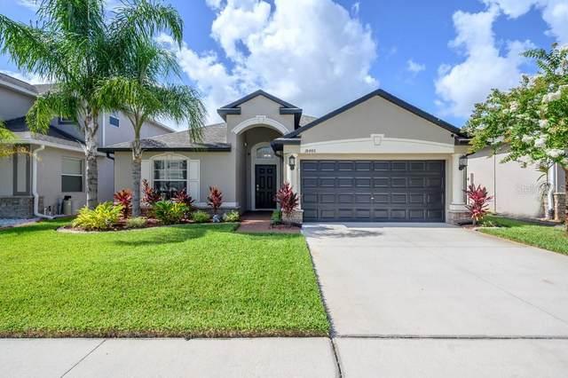 18486 Aylesbury Lane, Land O Lakes, FL 34638 (MLS #T3250839) :: Pepine Realty