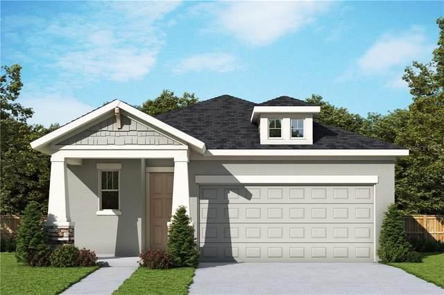 4281 Hibiscus Bloom Drive, Orlando, FL 32822 (MLS #T3250886) :: Team Bohannon Keller Williams, Tampa Properties