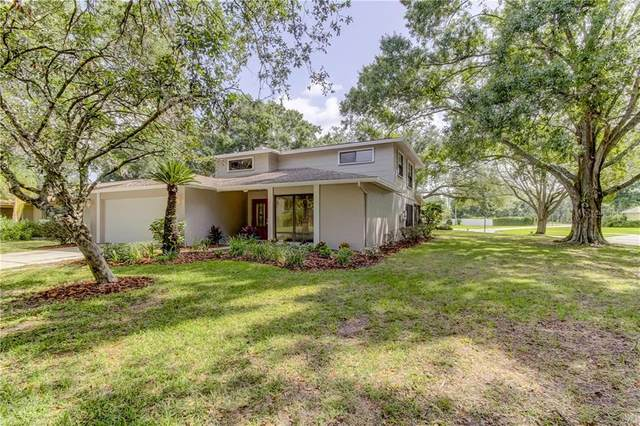 13701 Wilkes Dr, Tampa, FL 33618 (MLS #T3250912) :: Team Bohannon Keller Williams, Tampa Properties