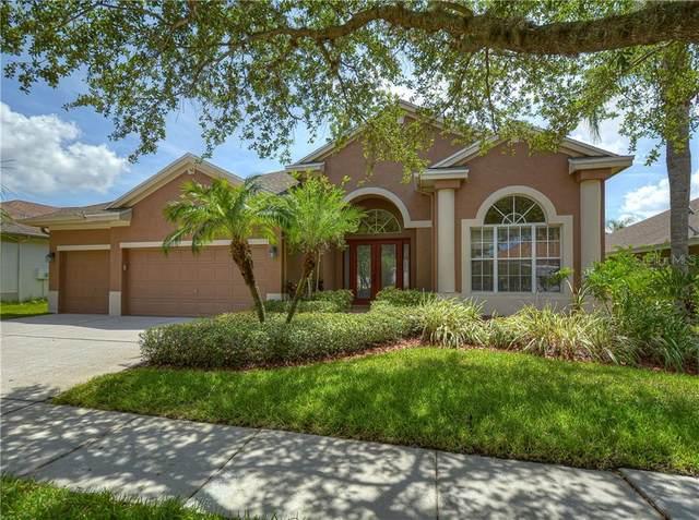 10605 Tavistock Drive, Tampa, FL 33626 (MLS #T3250926) :: Griffin Group