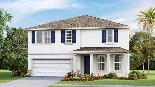 8340 Bower Bass Circle, Wesley Chapel, FL 33545 (MLS #T3250937) :: Griffin Group