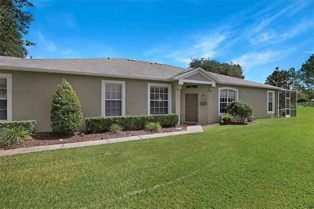 5728 Heronpark Place, Lithia, FL 33547 (MLS #T3250949) :: Armel Real Estate