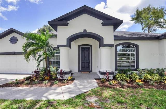 7213 Woodbrook Drive, Tampa, FL 33625 (MLS #T3250992) :: GO Realty