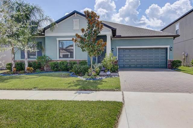 13444 White Sapphire Road, Riverview, FL 33579 (MLS #T3251012) :: Team Borham at Keller Williams Realty
