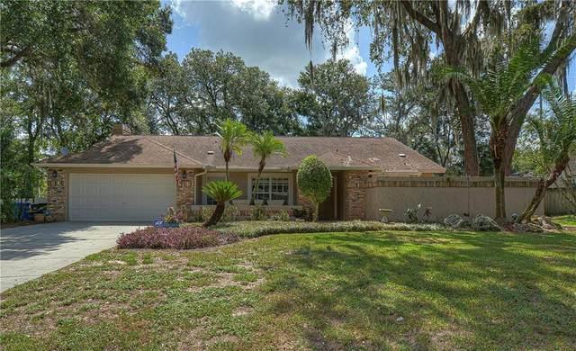 2780 Buckhorn Oaks Drive, Valrico, FL 33594 (MLS #T3251046) :: The Brenda Wade Team