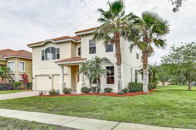 12840 Darby Ridge Drive, Tampa, FL 33624 (MLS #T3251055) :: Carmena and Associates Realty Group