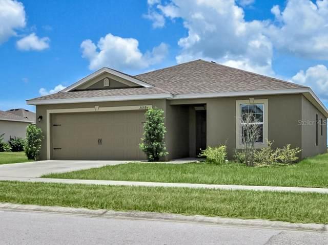 30584 Satinleaf Run, Brooksville, FL 34602 (MLS #T3251081) :: Griffin Group
