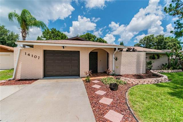 14107 Lonewood Place, Tampa, FL 33625 (MLS #T3251097) :: Griffin Group