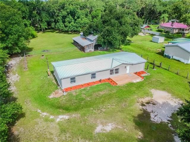 4660 Bridle Path Drive, Lakeland, FL 33810 (MLS #T3251111) :: Griffin Group