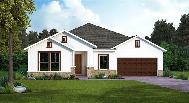 5217 Gavella Cove, Palmetto, FL 34221 (MLS #T3251121) :: Pepine Realty