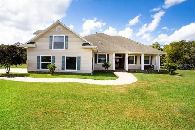 18606 Dorman Ranch Lane, Lithia, FL 33547 (MLS #T3251124) :: Griffin Group