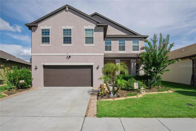 4951 Rolling Green Drive, Wesley Chapel, FL 33543 (MLS #T3251131) :: Bridge Realty Group