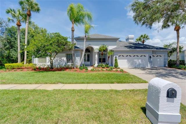 19017 Saint Laurent Drive, Lutz, FL 33558 (MLS #T3251135) :: Alpha Equity Team