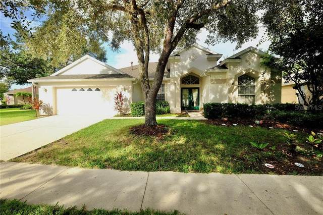 18148 Heron Walk Drive, Tampa, FL 33647 (MLS #T3251199) :: Team Bohannon Keller Williams, Tampa Properties