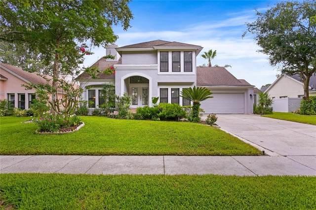 6225 Greenwich Drive, Tampa, FL 33647 (MLS #T3251208) :: Frankenstein Home Team