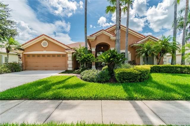 19011 Saint Laurent Drive, Lutz, FL 33558 (MLS #T3251217) :: Carmena and Associates Realty Group