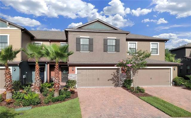 28420 Tranquil Lake Circle, Wesley Chapel, FL 33543 (MLS #T3251218) :: Bridge Realty Group