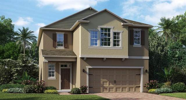 4414 Seven Canyons Drive, Kissimmee, FL 34746 (MLS #T3251257) :: Homepride Realty Services