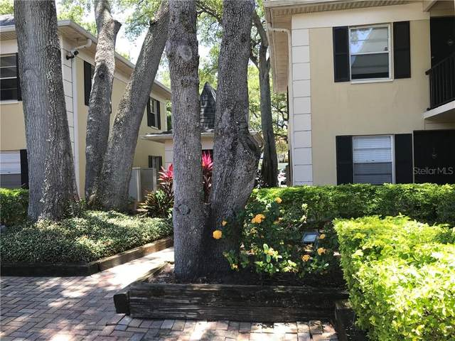 5221 Bayshore Boulevard #19, Tampa, FL 33611 (MLS #T3251301) :: Your Florida House Team