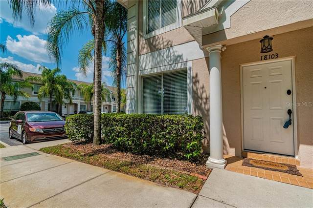 18103 Paradise Point Drive, Tampa, FL 33647 (MLS #T3251312) :: Cartwright Realty