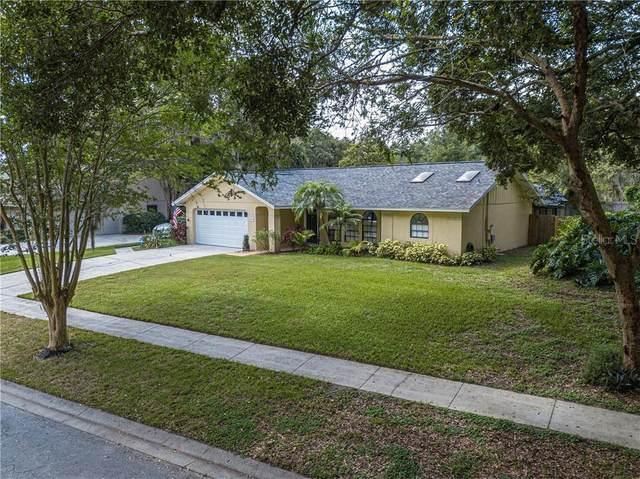 409 Penn National Road, Seffner, FL 33584 (MLS #T3251335) :: Armel Real Estate