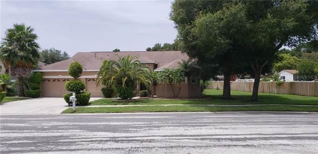 223 Rosana Drive, Brandon, FL 33511 (MLS #T3251362) :: Florida Real Estate Sellers at Keller Williams Realty