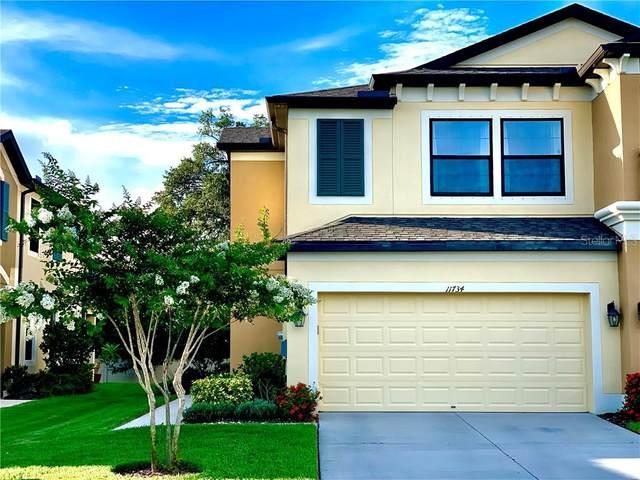 11734 Crowned Sparrow Lane, Tampa, FL 33626 (MLS #T3251366) :: Team Bohannon Keller Williams, Tampa Properties