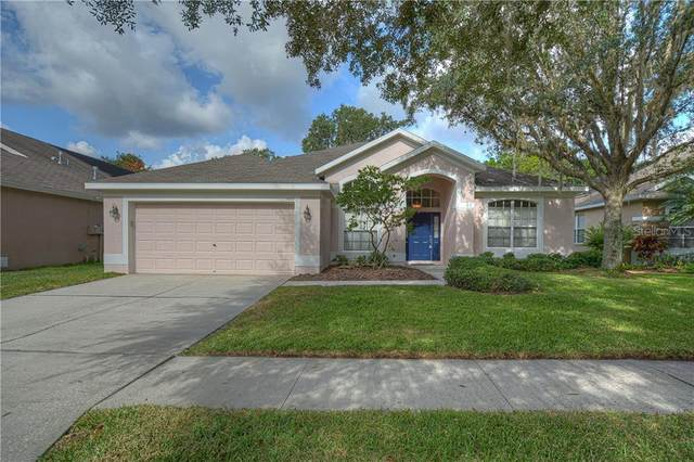 5917 Tealwater Place, Lithia, FL 33547 (MLS #T3251369) :: The Duncan Duo Team