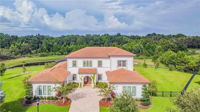 16419 Chapman Crossing Drive, Lithia, FL 33547 (MLS #T3251373) :: Armel Real Estate