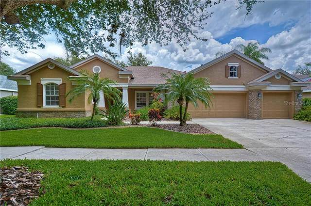 15208 Merlinpark Place, Lithia, FL 33547 (MLS #T3251383) :: The Duncan Duo Team