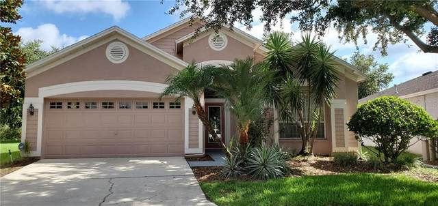 18054 Arbor Crest Drive, Tampa, FL 33647 (MLS #T3251392) :: Team Bohannon Keller Williams, Tampa Properties